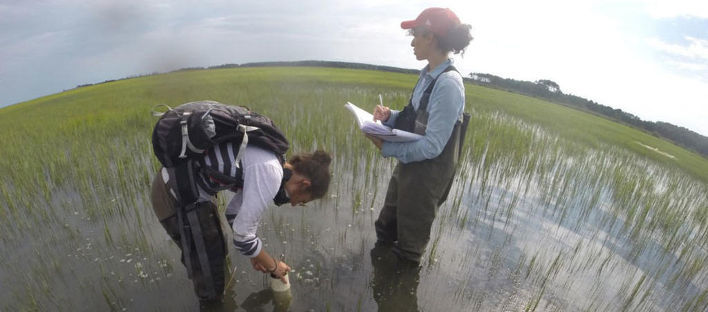 Mason engineers collect data in the Chesapeake Bay